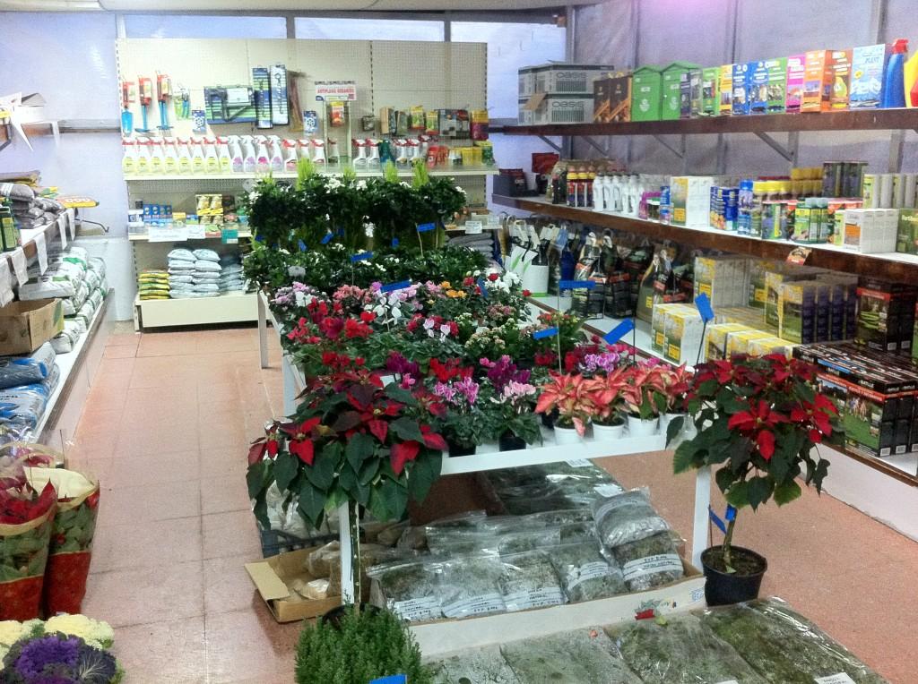 Viveros De Plantas En Madrid #2: IMG_3058-1024x764.jpg