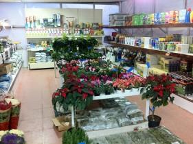 Vivero y tienda viveros en madrid - Vivero madrid centro ...